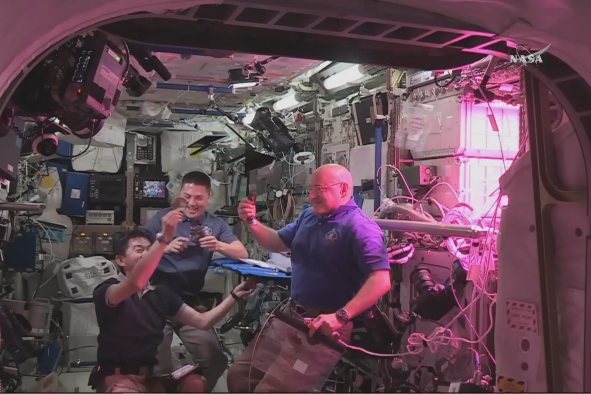 Hydroponic Lettuce grown on the International Space Station was harvested and sampled by the astronauts.