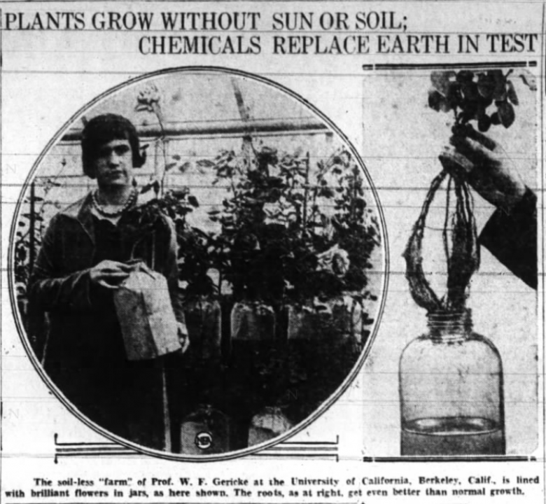 Plants Grow Without Sun or Soil; Chemicals Replace Earth in Test | Hydroponics History
